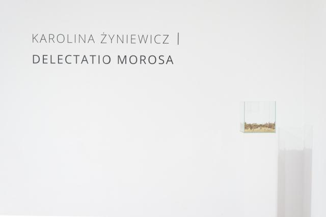 1. dokumentacja delectatio morosa_tytus szabelski-03