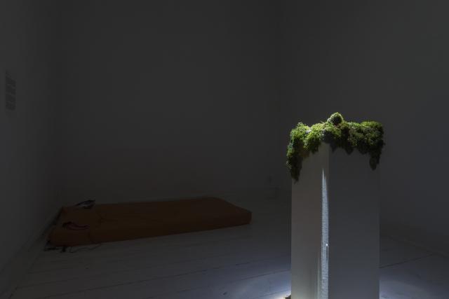 Dagmara Pochyła, This is from the Earth, 2016, instalacja dźwiękowa oraz Bogusz Bogatko, Nasiąkanie, 2016, dźwięk, obiekt, płyta MDF, mech, porosty, ziemia. Fot. Tytus Szabelski
