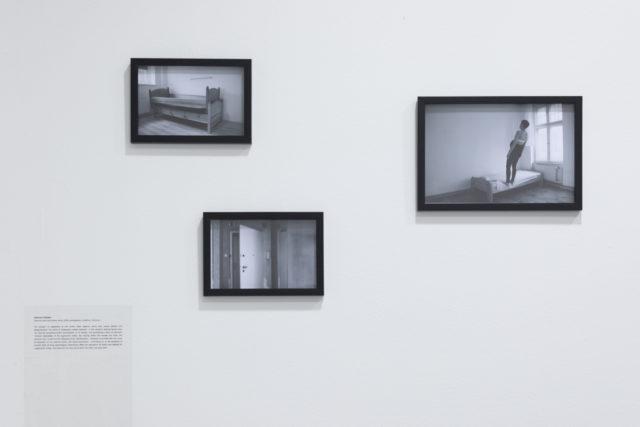 Fot. Tytus Szabelski