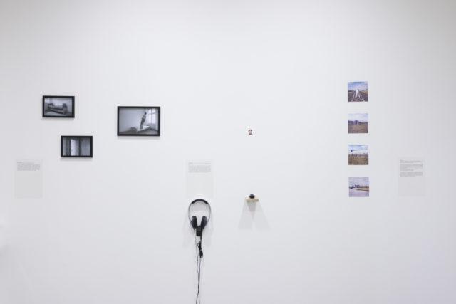 Widok ogólny ekspozcji. Fot. Tytus Szabelski (4)